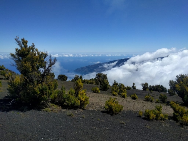 Pico Malpaso