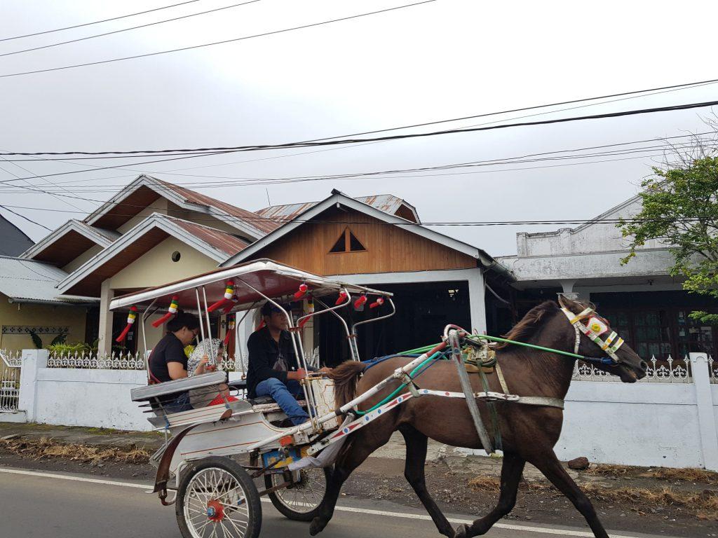 Sulawesi Transport